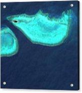 Heron Island Acrylic Print