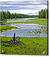 Heron Pond In Grand Teton National Park-wyoming   Acrylic Print