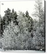 Hersey Lake Under Snow Acrylic Print