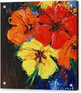 Hibiscus Colours Acrylic Print