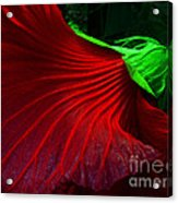 Hibiscus Red Acrylic Print