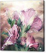 Hibiscus Sky - Pastel Pink Tones Acrylic Print