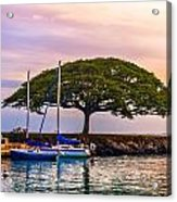 Hickam Harbor View Acrylic Print by Lisa Cortez