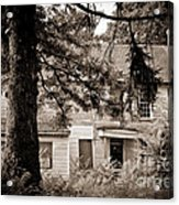 Hidden Behind The Pines Acrylic Print by Colleen Kammerer