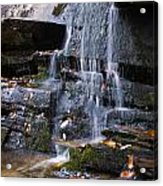 Hidden Falls 6 Acrylic Print