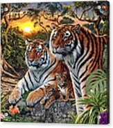Hidden Images - Tigers Acrylic Print by Steve Read