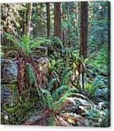 Hidden Rock Wall Acrylic Print