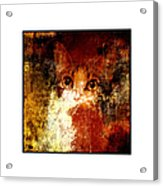 Hidden Square White Frame Acrylic Print by Andee Design
