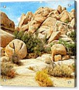 Hidden Valley Trail Acrylic Print