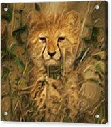 Hiding In The Tall Grass Acrylic Print