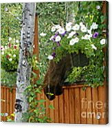 Hiding Moose Acrylic Print