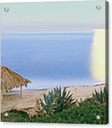High Angle View Of Windansea Beach, La Acrylic Print