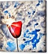 High As A Sky Acrylic Print