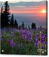 High Country Dawn Acrylic Print
