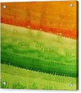 High Desert Original Painting Acrylic Print