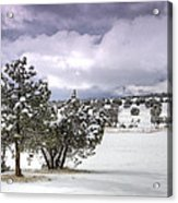 High Desert Snow Acrylic Print