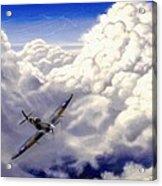 High Flight Acrylic Print by Michael Swanson
