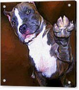 High Four Acrylic Print