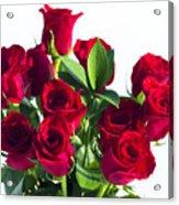High Key Red Roses Acrylic Print
