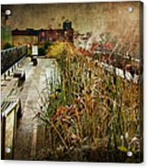 High Line Park In The Rain New York Acrylic Print