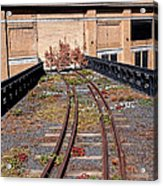 High Line Spur Acrylic Print by Rona Black