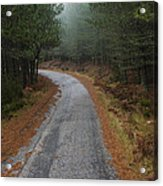 High Mountain Road Acrylic Print
