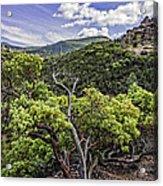 High Peaks Trail View Acrylic Print