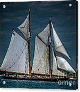 Highlander Sea Acrylic Print