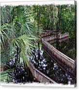 Highwater Reflection Acrylic Print
