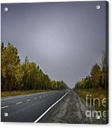 Highway Of Foliage Acrylic Print