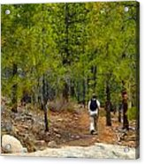 Hike On 2 Acrylic Print