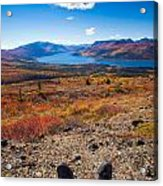 Hiker In Fall-colored Tundra Acrylic Print