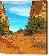 Hiking Between Massive Needles In Needles District Of Canyonlands National Park-utah Acrylic Print