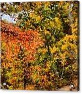 Hiking In Autumn Acrylic Print