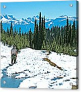 Hiking In Spring In Revelstoke National Park-british Columbia  Acrylic Print