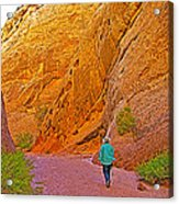 Hiking On Capitol Gorge Pioneer Trail In Capitol Reef National Park-utah Acrylic Print