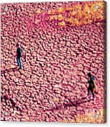 Hiking On The Cracked Purple Earth Acrylic Print