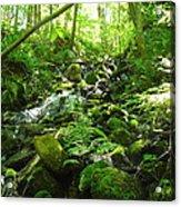Hiking The Falls Acrylic Print