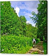 Hiking Trail Along Rivier Du Nord In The Laurentians North Of Montreal-qc Acrylic Print