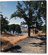 Hiking Trail Acrylic Print