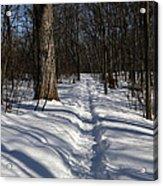 Hiking Trail Shadows Acrylic Print