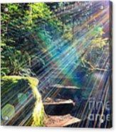 Hiking Trail Sun Flares Acrylic Print