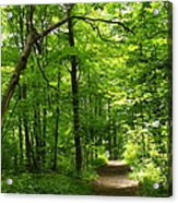 Hiking Trails To Mont Morency Falls Acrylic Print