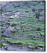 Hill Modified For Agriculture, Tetang Acrylic Print
