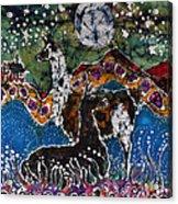 Hills Alive With Llamas Acrylic Print
