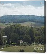 Hills In Tennessee Acrylic Print