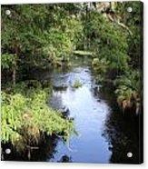 Hillsborough River Acrylic Print