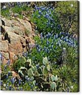 Hillside Blue Acrylic Print by Robert Anschutz
