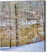 Hillside Snow - Winter Landscape Acrylic Print