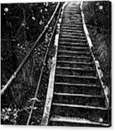 Hillside Stairs Acrylic Print